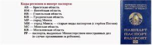 Когда получают паспорт по возрасту в россии