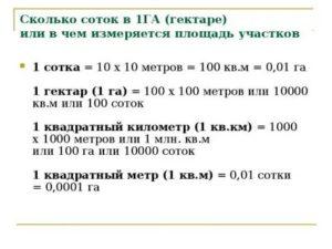Сколько 1 гектар в сотках