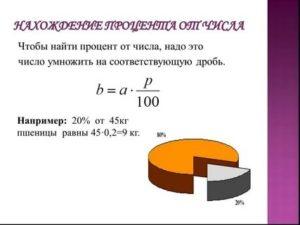 Как найти долю в процентах