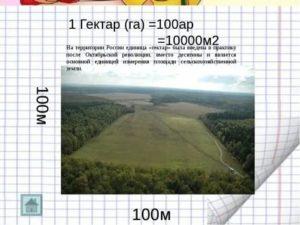 100 гектаров это сколько
