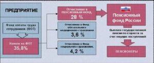 Сколько В Пенсионный Фонд Отчисляет Работодатель В Пенсионный Фонд