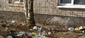 Статья о выбрасывание из окон мусора