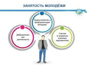 Программы по трудоустройству  занятости и профориентации молодёжи в рф в 2019