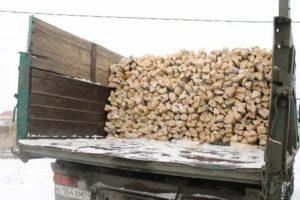 Как получить дрова бесплатно от государства 2019