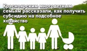 Субсидии Для Лпхв Тульской Области Многодетная