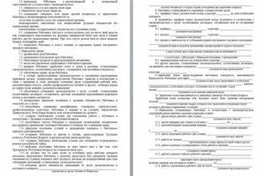 Срочный трудовой договор образец рб