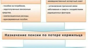 Как получить компенсацию за похороны пенсионера в москве