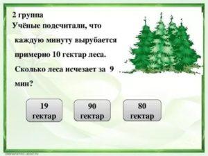 Гектар леса это сколько