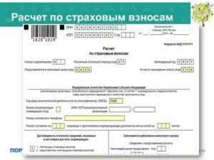 Проверка рсв 2019 для налоговой онлайн контур бесплатно