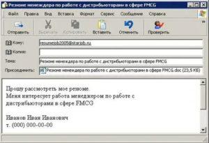 Пример резюме для отправки на электронную почту