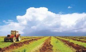 Внутрихозяйственные дороги на землях сельхозназначения
